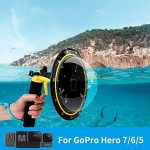 GoPro Shooting Guide For Underwater Videography - La vie de plongeur